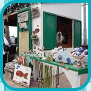 Posidonia Festival Eco-Fair